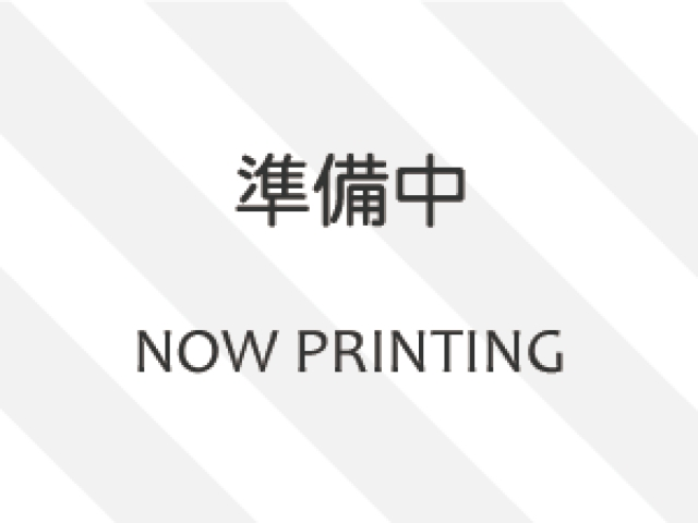 HONDA STEP WAGON
